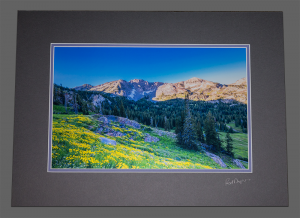 Albion Basin Matted Photo